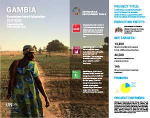 Gambia - EbA